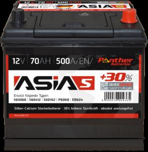 Panther ASIA 05
