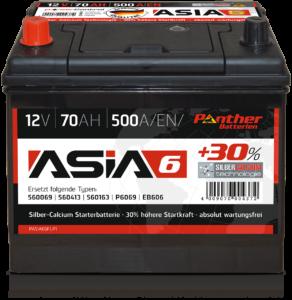 Panther ASIA 06