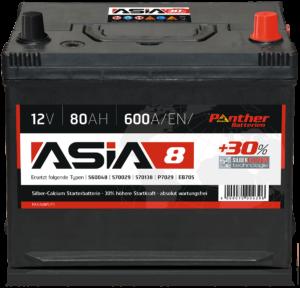 Panther ASIA 08